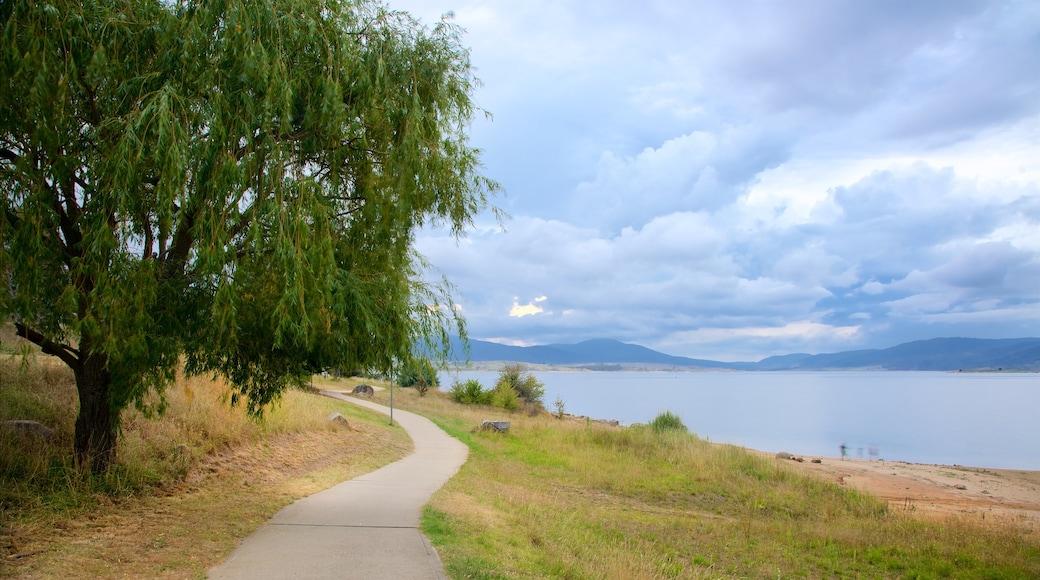 Lake Jindabyne featuring general coastal views