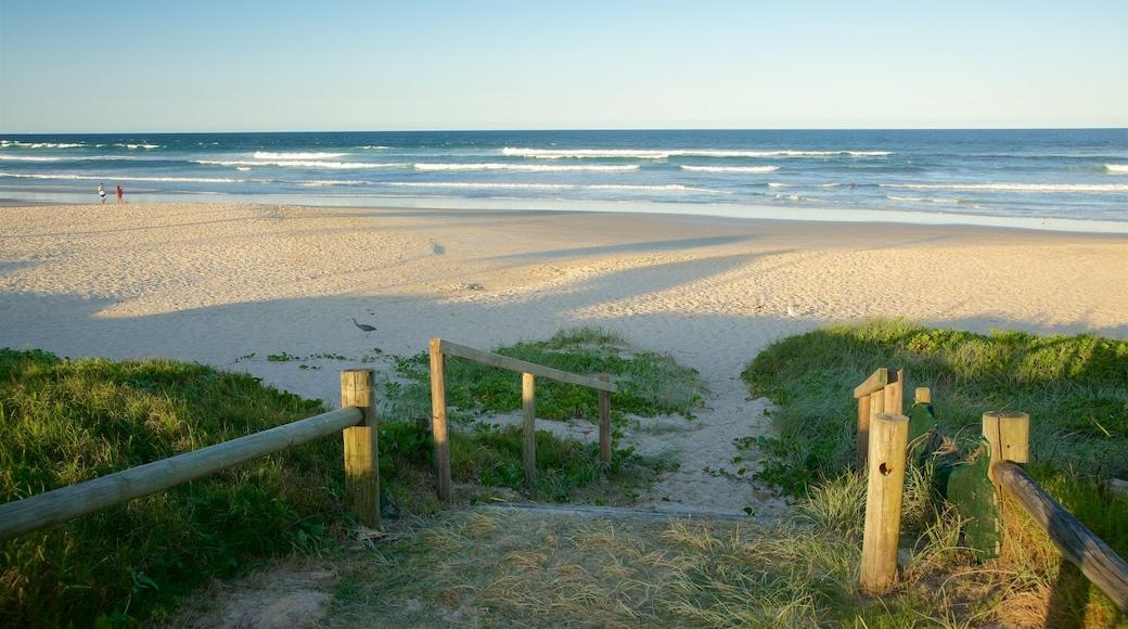 Lennox Head featuring a sandy beach