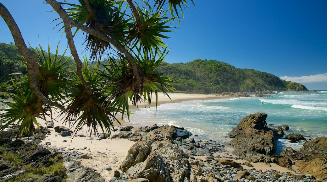 Playa de Kings que incluye una playa y costa escarpada