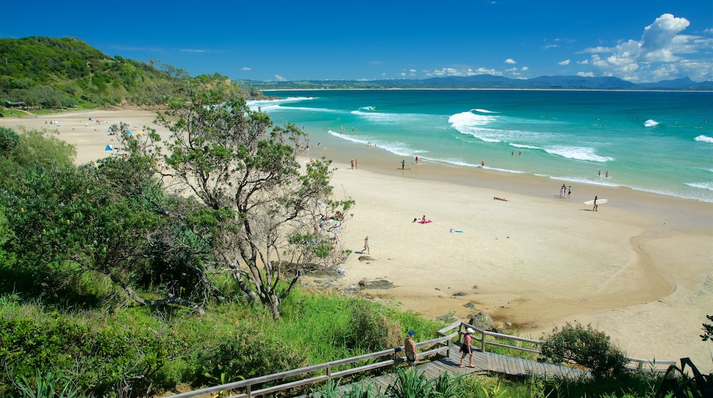 Wategos Beach showing a sandy beach