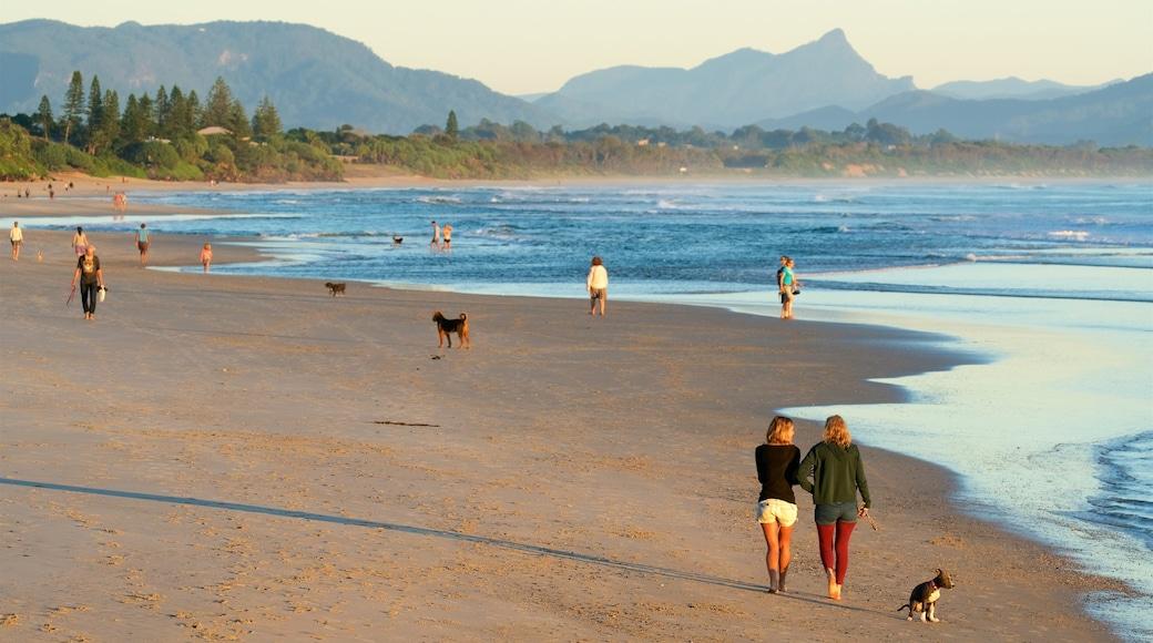 Byron Bay que incluye una playa de arena