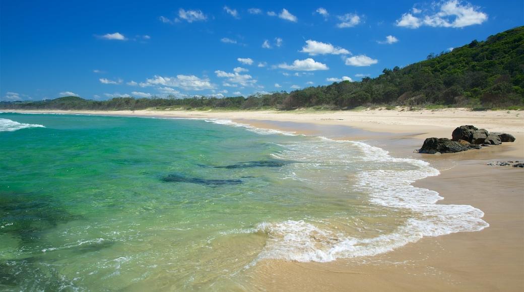 Tallow Beach featuring a beach and rocky coastline