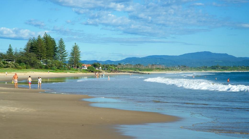 Main Beach showing a sandy beach