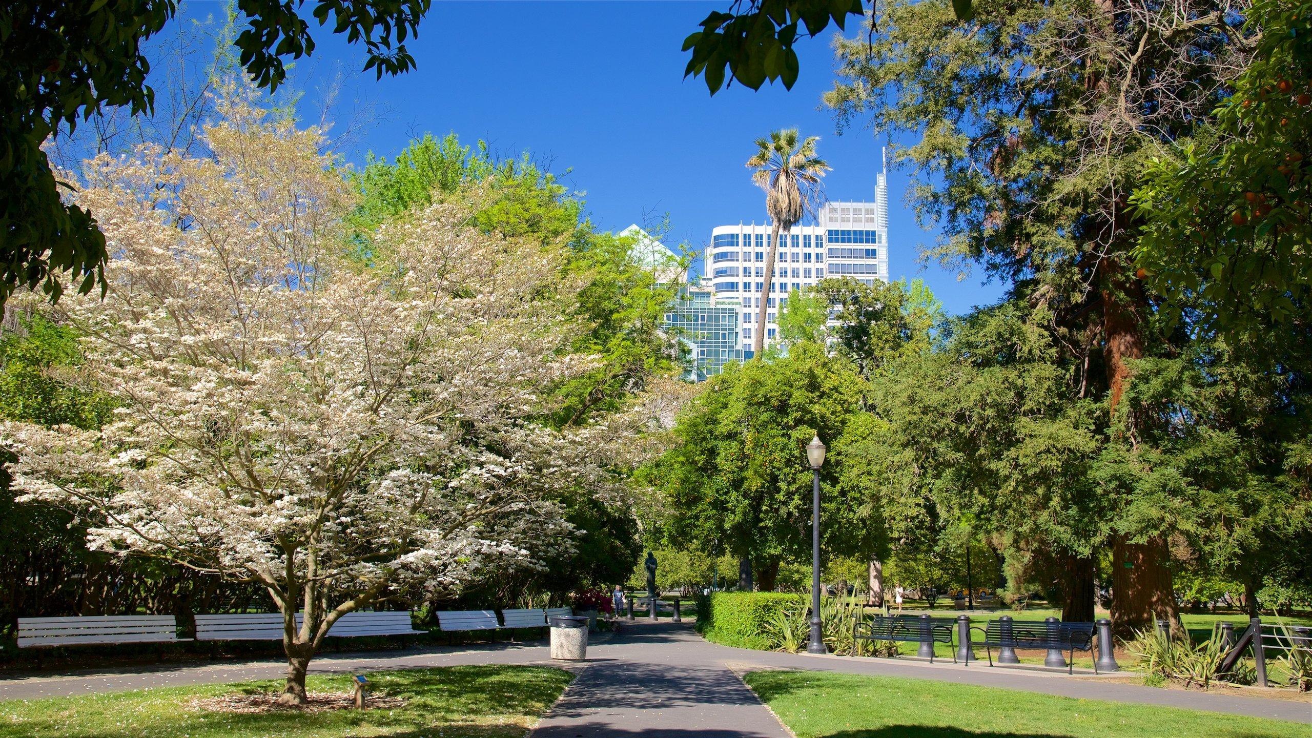 Sacramento Capitol Park, Sacramento, California, United States of America