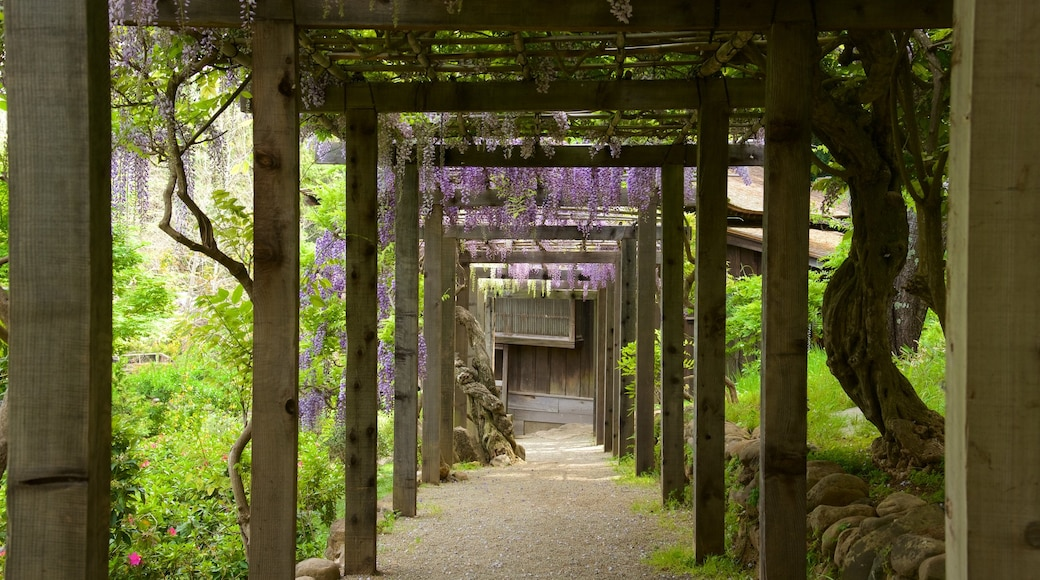 Hakone Gardens which includes a park
