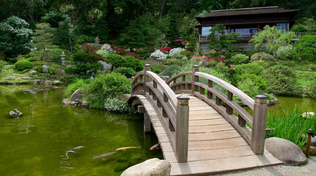 箱根花園 设有 花園