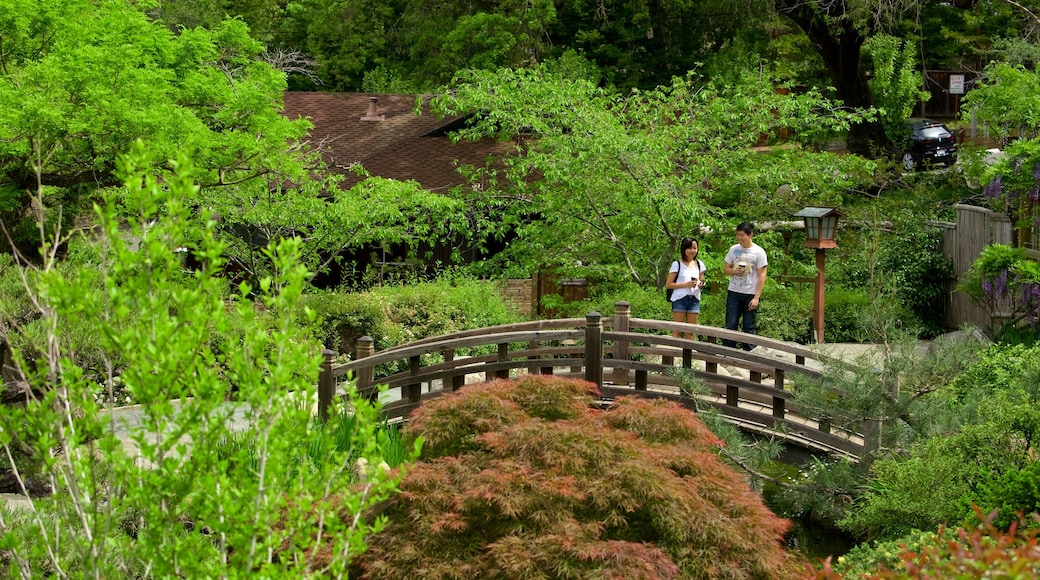 Hakone Gardens featuring a park as well as a couple