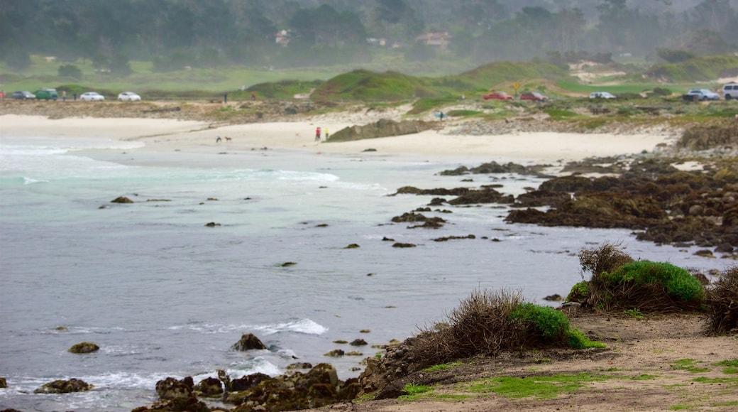 17-Mile Drive que inclui litoral rochoso