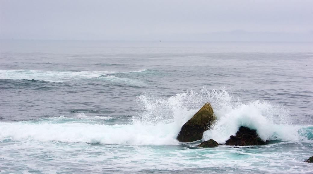 17-Mile Drive que inclui litoral acidentado e surfe