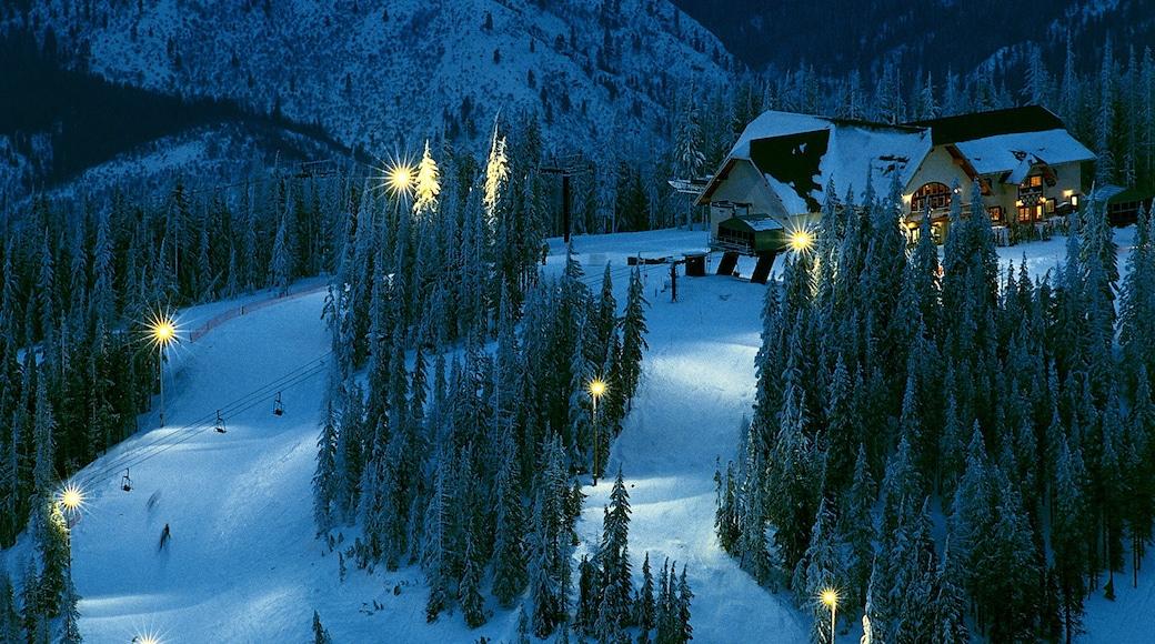 Kellogg joka esittää lunta, yökuvat ja gondoli