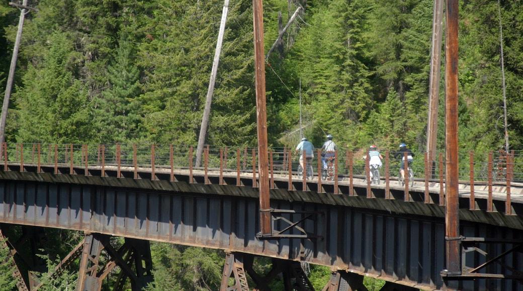 Wallace johon kuuluu metsänäkymät, silta ja maantiepyöräily