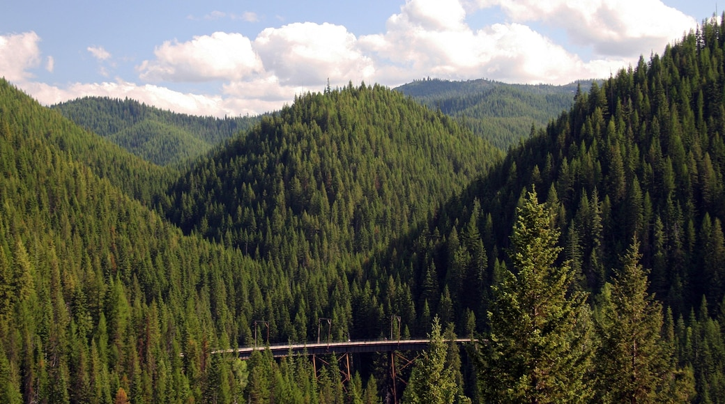 Wallace johon kuuluu rauhalliset maisemat ja metsät