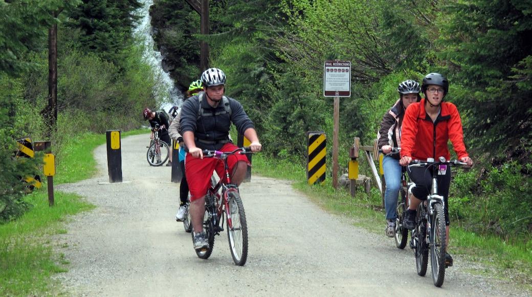 Wallace featuring maastopyöräily ja metsänäkymät sekä pieni ryhmä ihmisiä