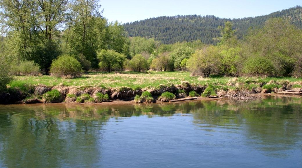 St. Maries featuring joki tai puro ja metsänäkymät