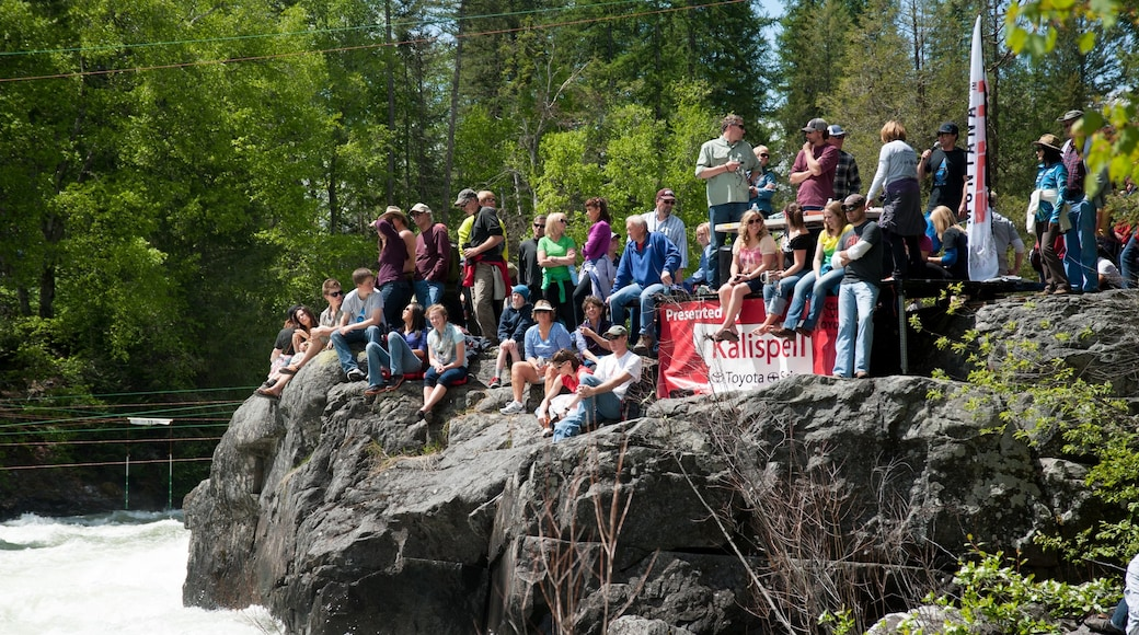 Bigfork showing a garden as well as a large group of people