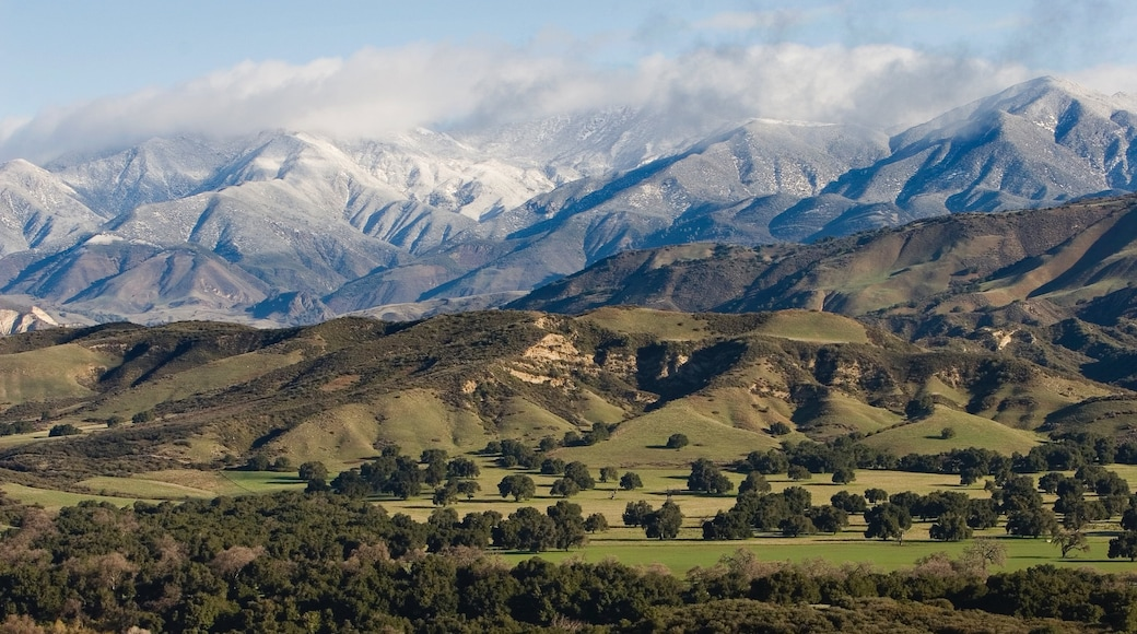Santa Ynez Valley showing mountains and tranquil scenes