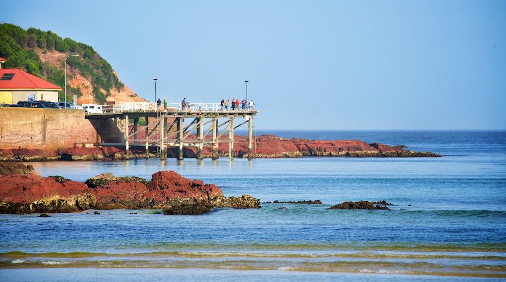 Merimbula featuring rocky coastline