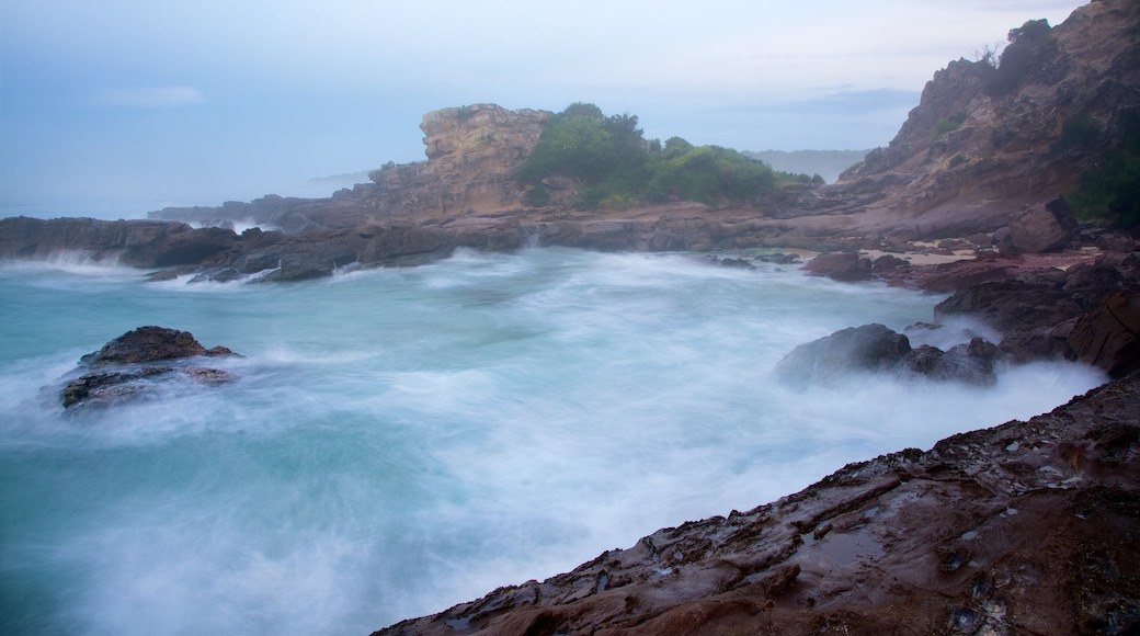 Pambula Beach featuring rugged coastline