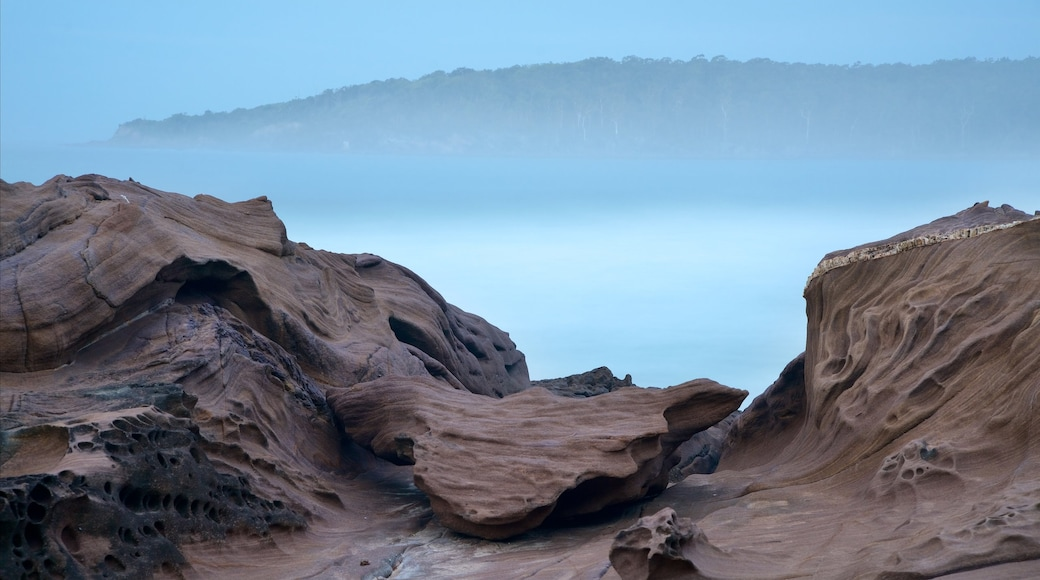 Pambula Beach featuring mist or fog and rugged coastline