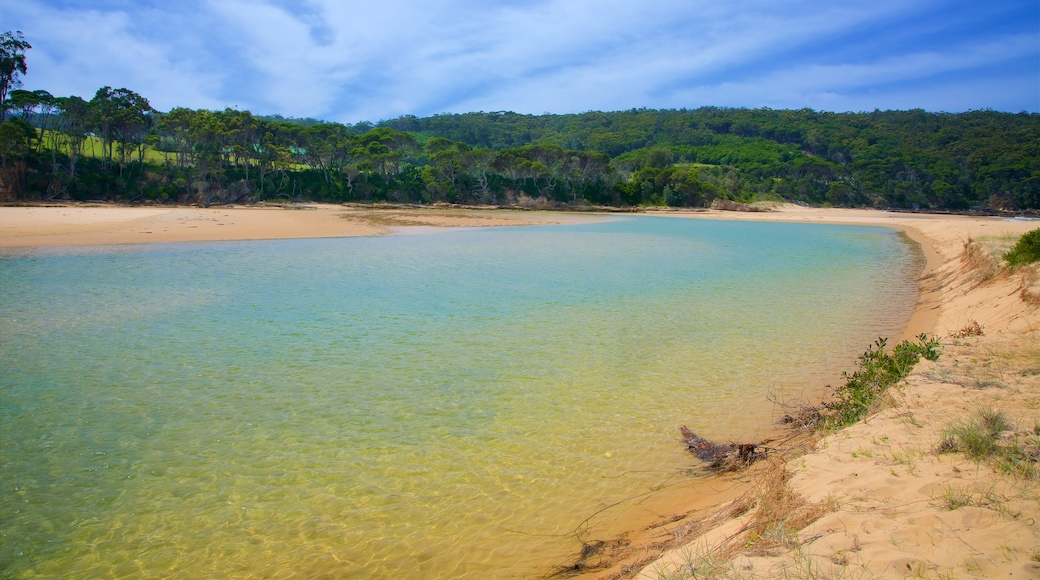 Aslings Beach featuring general coastal views and a lake or waterhole