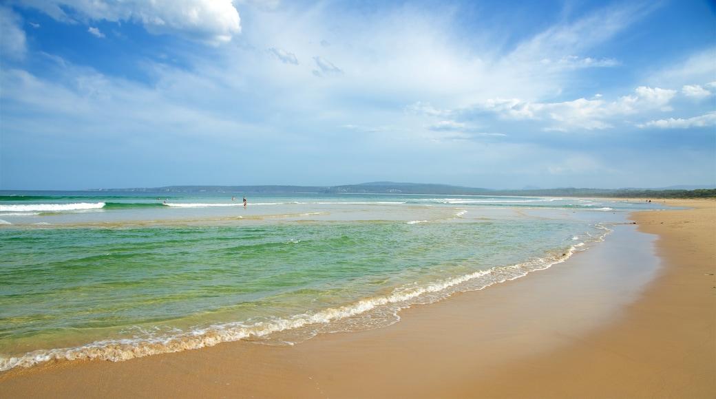 Main Beach Recreation Reserve featuring general coastal views and a sandy beach