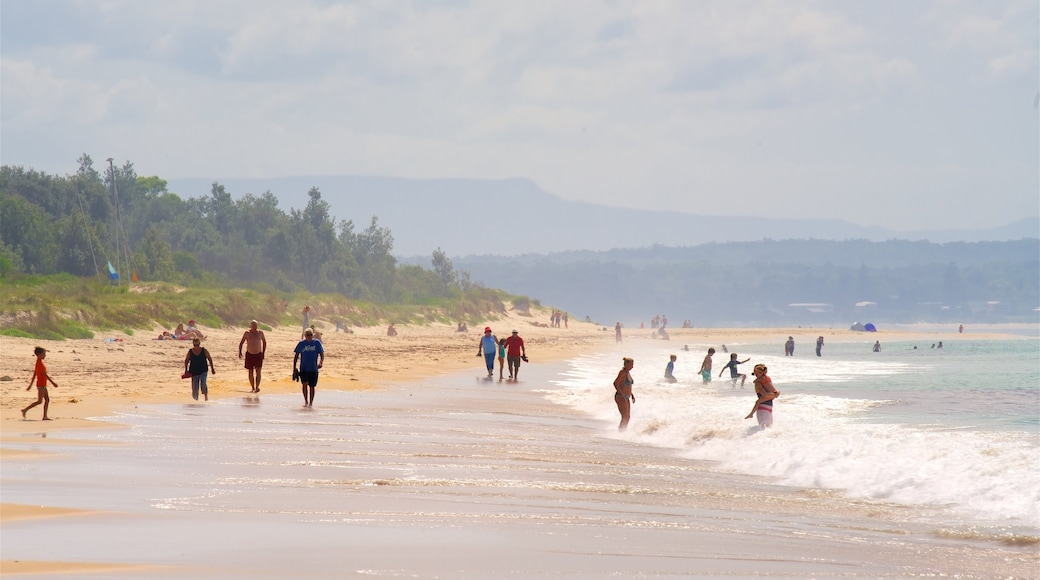 Collingwood Beach which includes a beach and general coastal views as well as a large group of people
