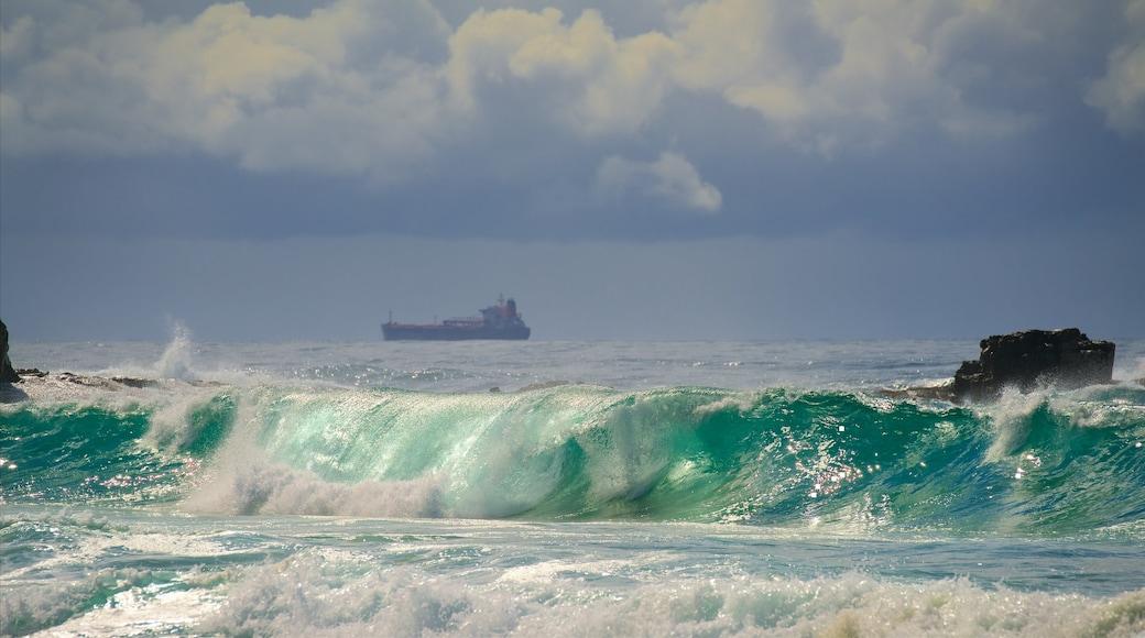 Wollongong South Beach showing surf and general coastal views