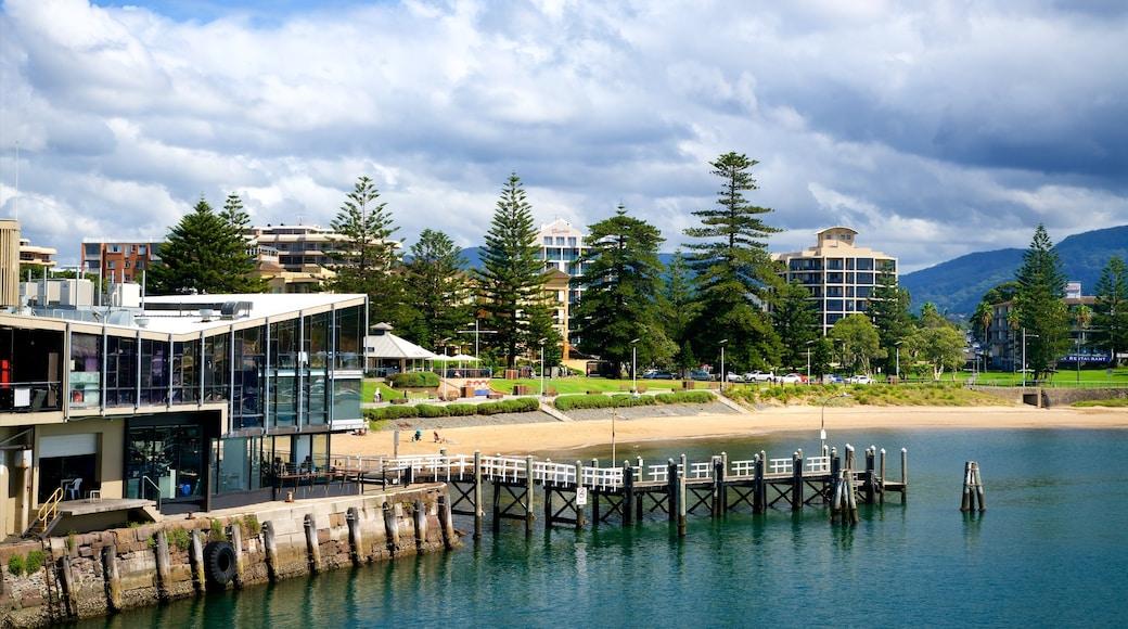 Wollongong showing a sandy beach and general coastal views
