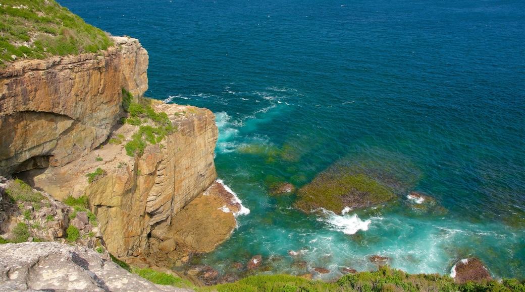 Booderee National Park showing rugged coastline