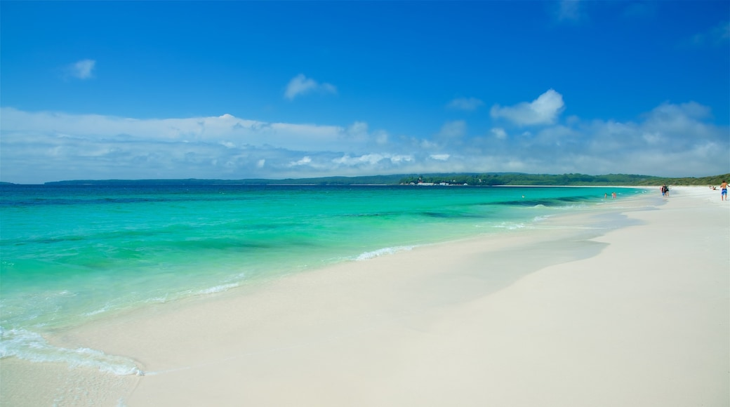 Jervis Bay featuring a sandy beach and general coastal views