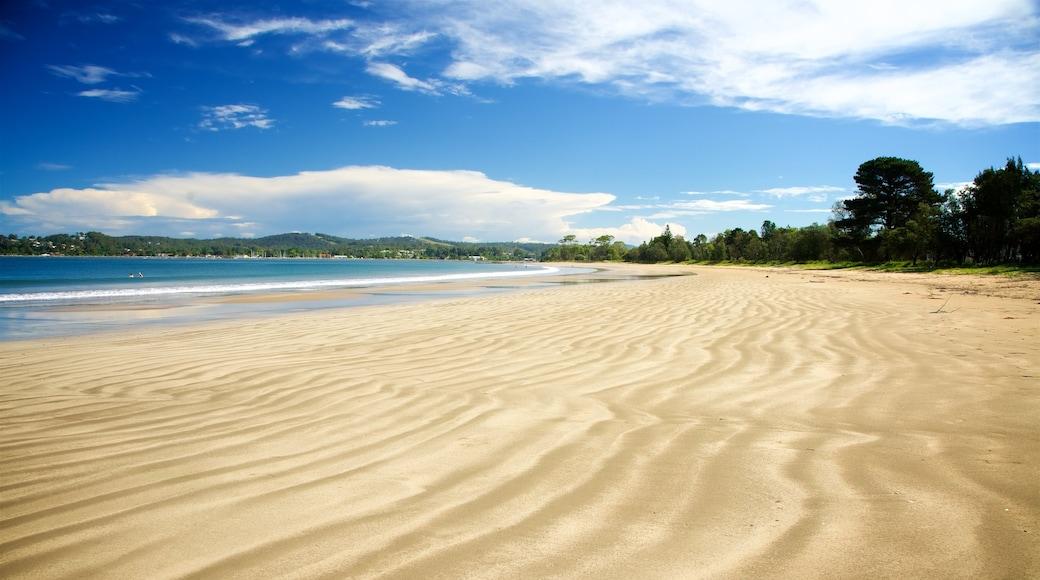 Batemans Bay featuring a beach and general coastal views