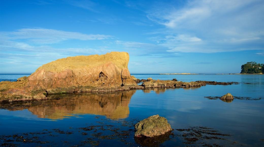 Caseys Beach which includes a sandy beach and rugged coastline
