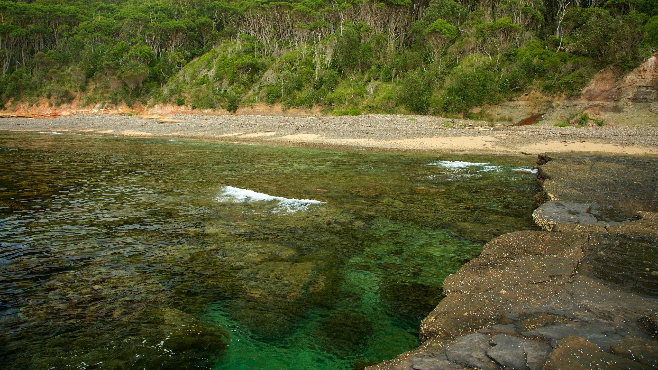 Pebbly Beach, Pebbly Beach, New South Wales, Australia