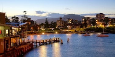 Wollongong showing a beach, a city and boating