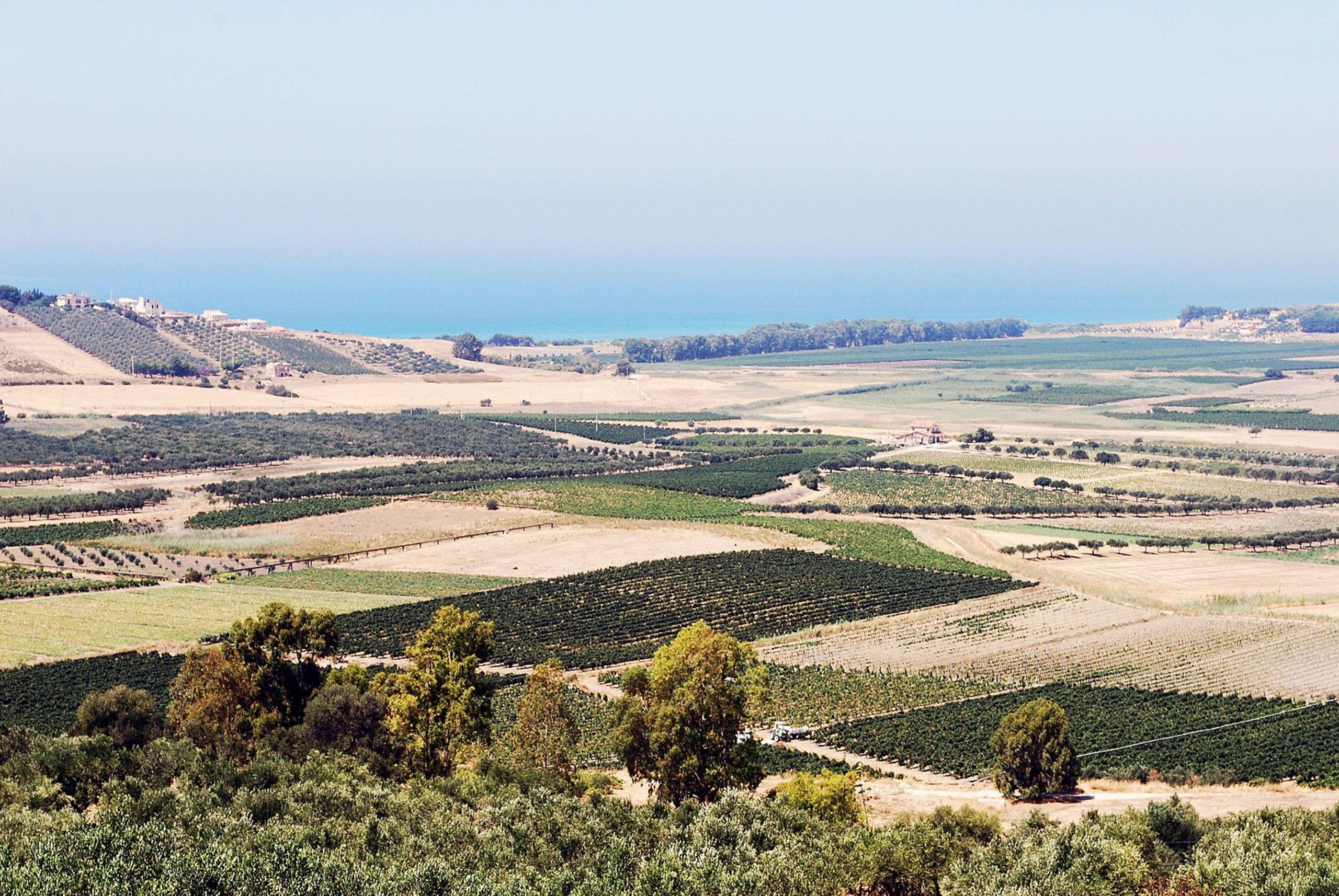Agriturismo in Sicilia: le 20 migliori strutture dove ...