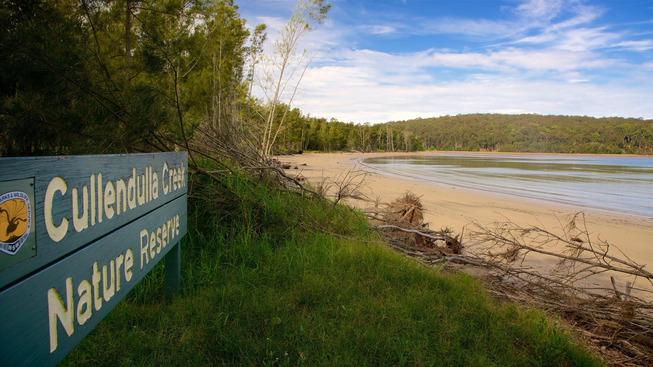 Cullendulla Creek Nature Reserve, Surfside, New South Wales, Australien