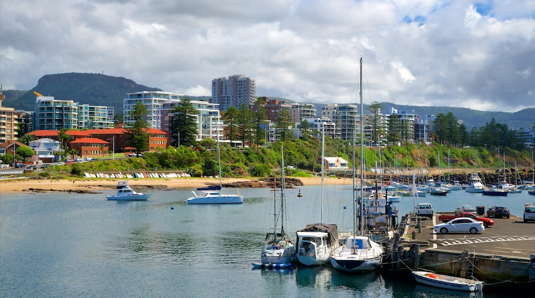 Wollongong Harbor showing a bay or harbour