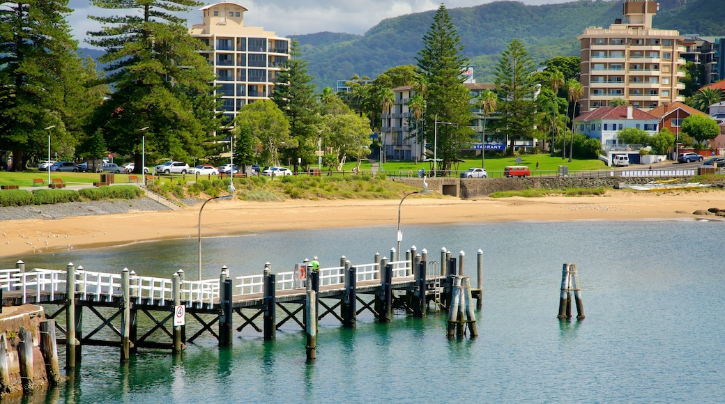 Wollongong which includes a coastal town, a bay or harbour and a sandy beach