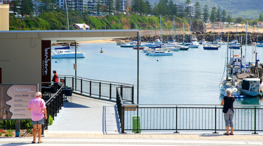 Wollongong showing a coastal town, a bay or harbour and signage