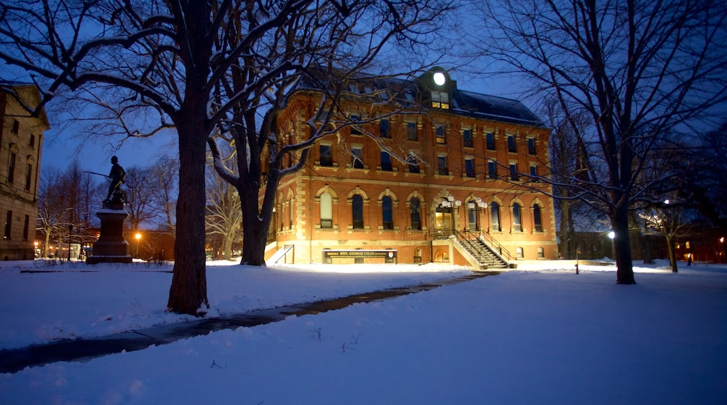 Charlottetown showing a house, heritage architecture and snow