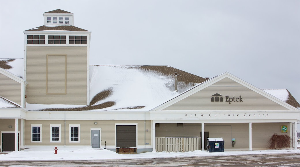 Centre culturel et artistique Eptek montrant neige