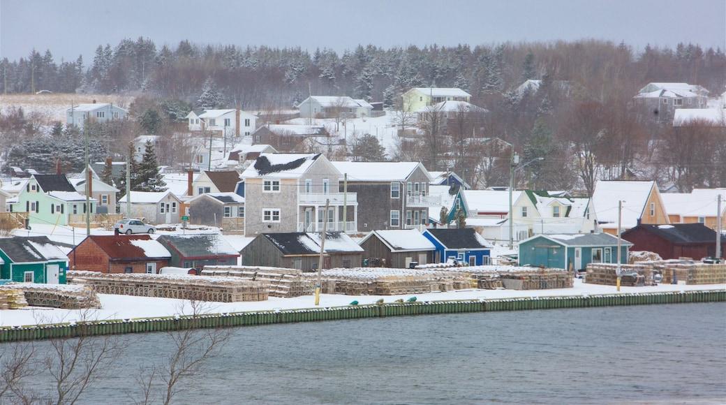 North Rustico mettant en vedette neige et petite ville ou village