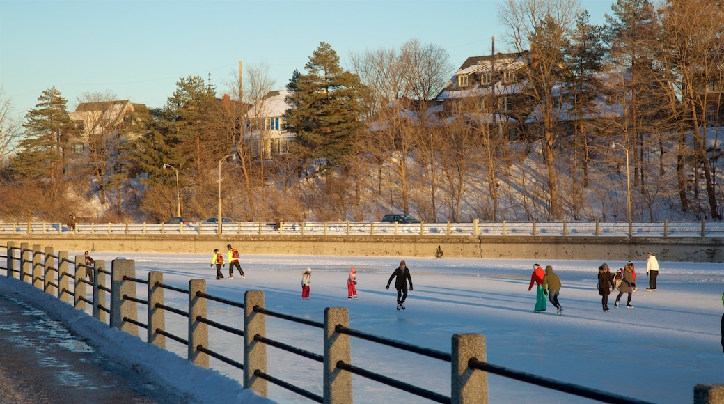 Rideau Canal which includes snow skiing and snow as well as a small group of people