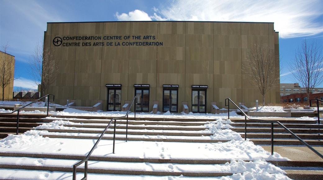 Centre des arts de la Confédération montrant neige