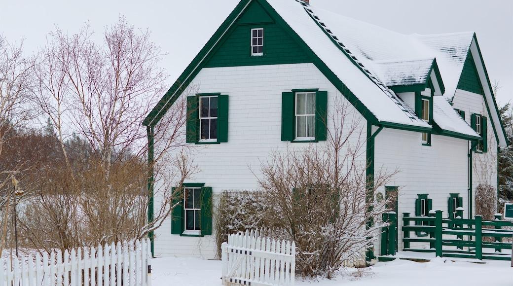 Green Gables montrant neige et maison