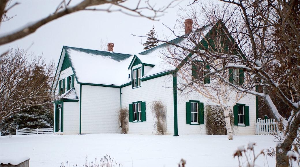 Green Gables que incluye nieve y una casa