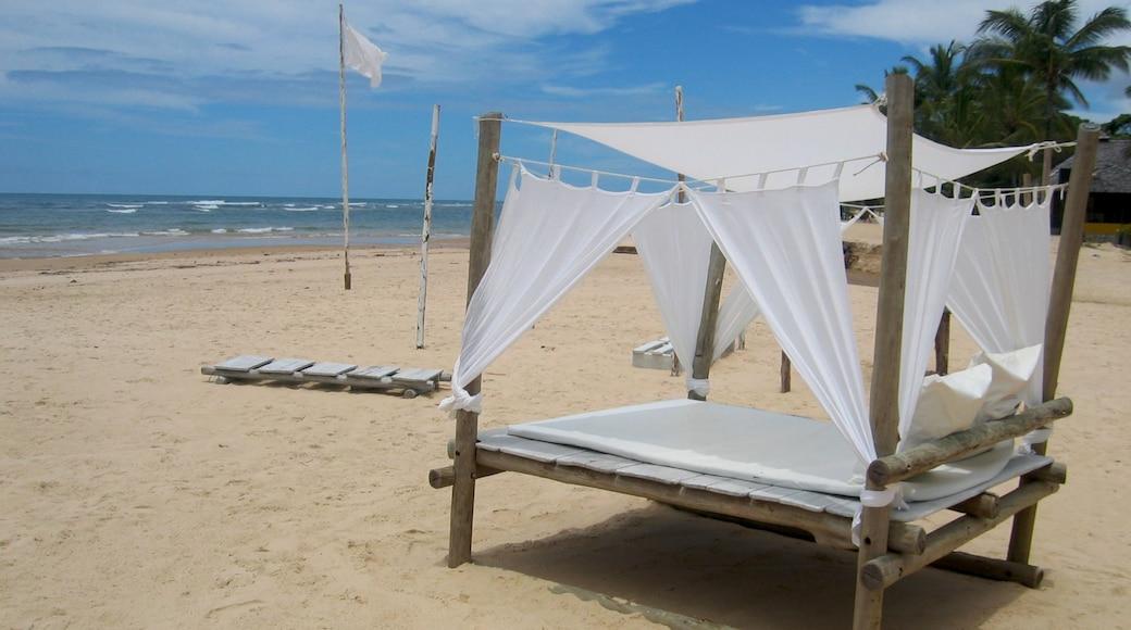 Nordeste que incluye una playa y un hotel de lujo o resort