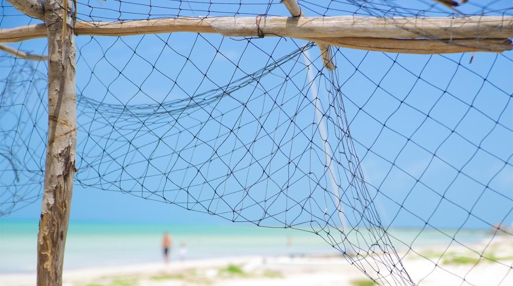 Mexico showing a sandy beach