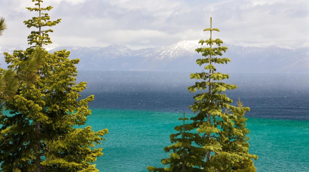 Nordkalifornien mit einem Waldmotive, Bucht oder Hafen und Berge