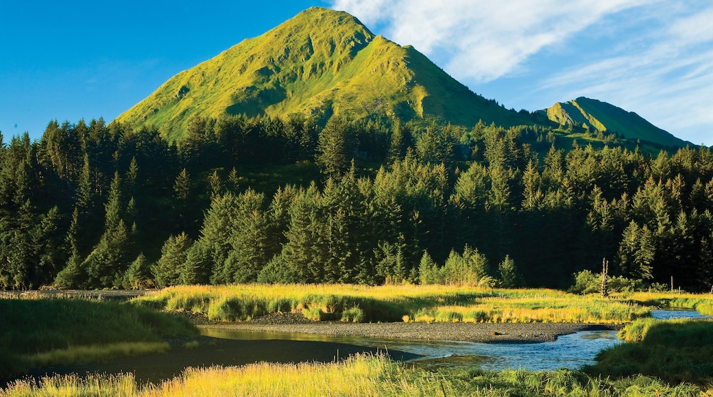 Kodiak Island which includes a lake or waterhole and mountains